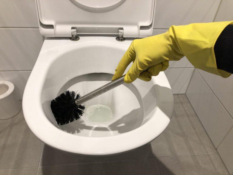 wc schoonmaken met wc borstel