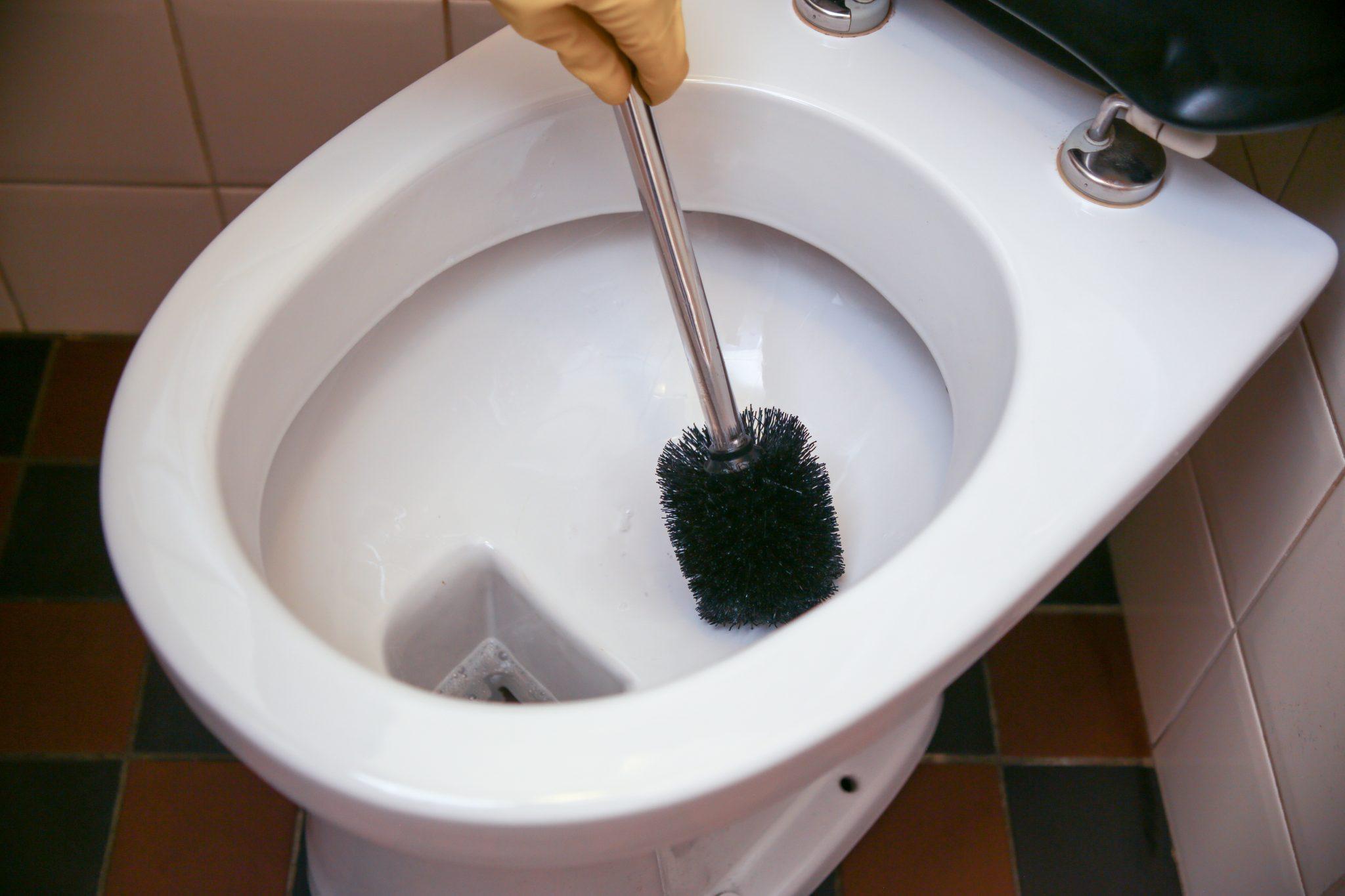 WC borstelen