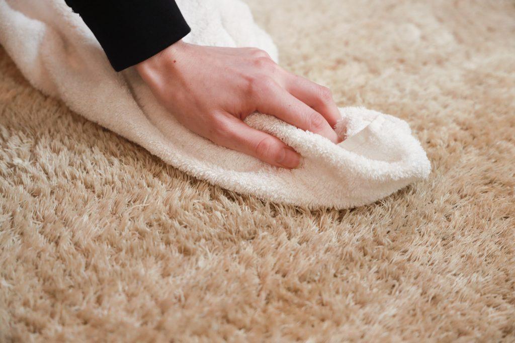 tapijt reinigen met james
